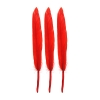Duck Wing Quills 3-4'' Red
